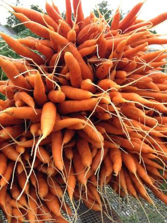 clean carrots